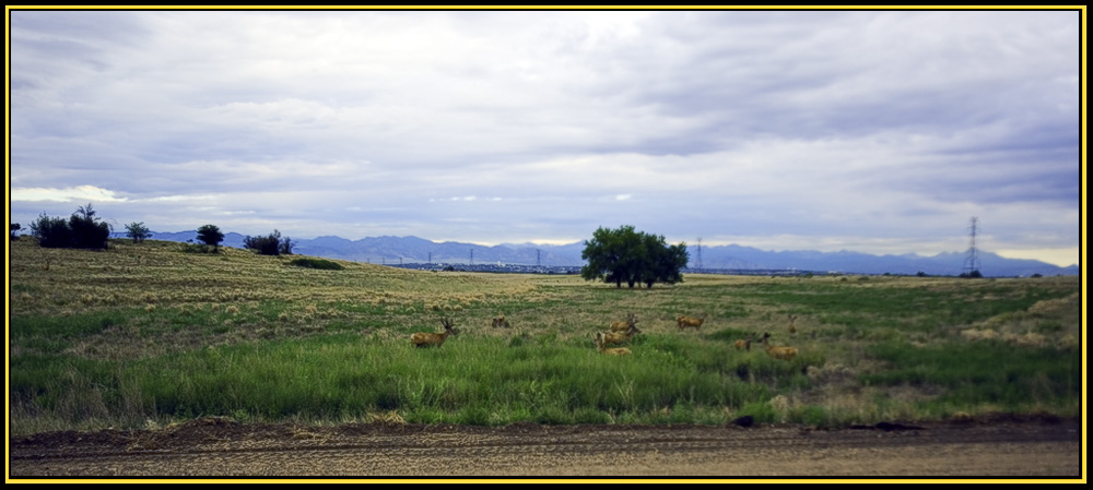 At the Entrance to the Arsenal