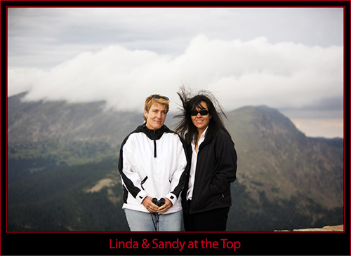 The Girls in the Wind