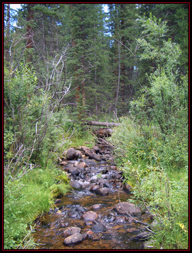 Sandy's Exposure from the Bridge