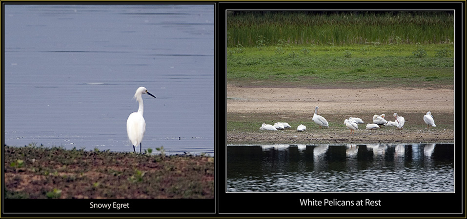 On the Tour