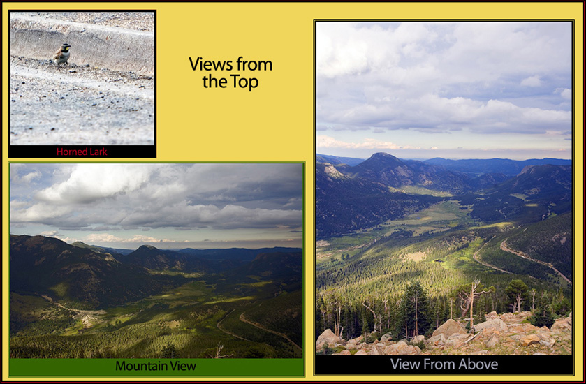 Images From the Turn-off
