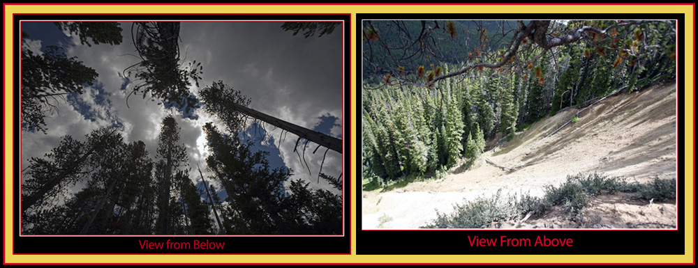 Views from Our Vantage Point