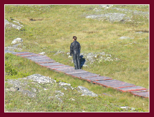 Linda on the Brachois Falls boardwalk