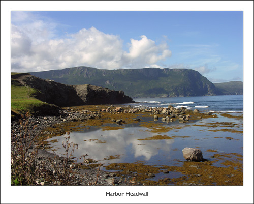 Harbor View