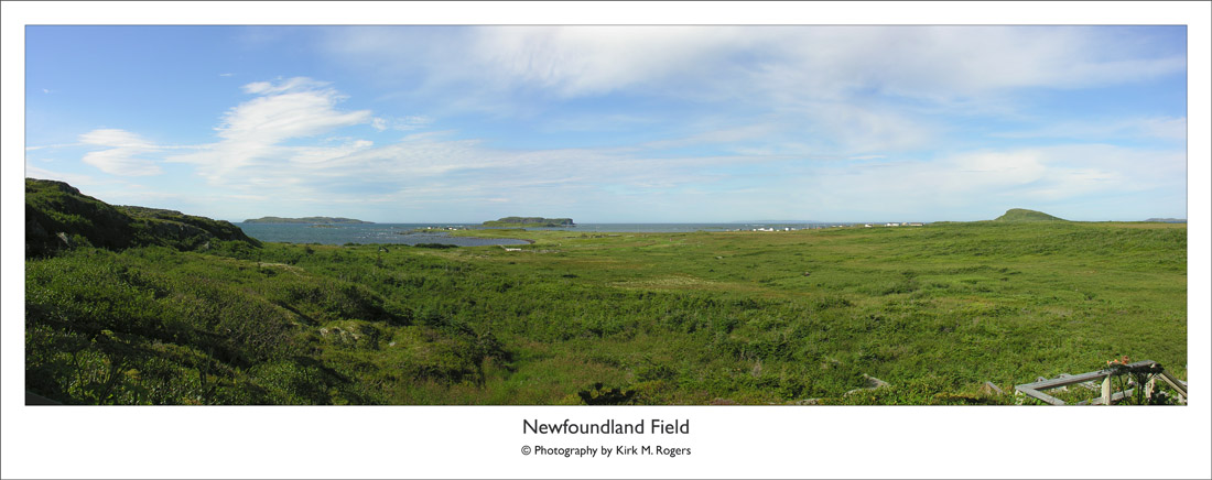 Landscape at LAM