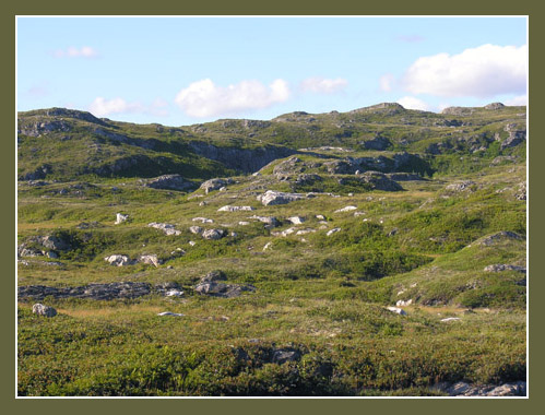 Landscape along Route 470