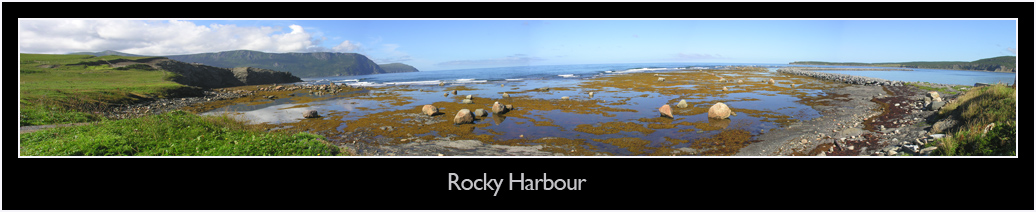 Rocky Harbour View