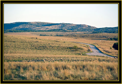 View in the Special Use Area - Wichita Mountains Wildlife Refuge
