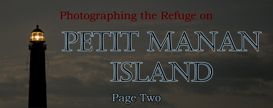 Photographing the Refuge on Petit Manan Island, Maine, Page Two