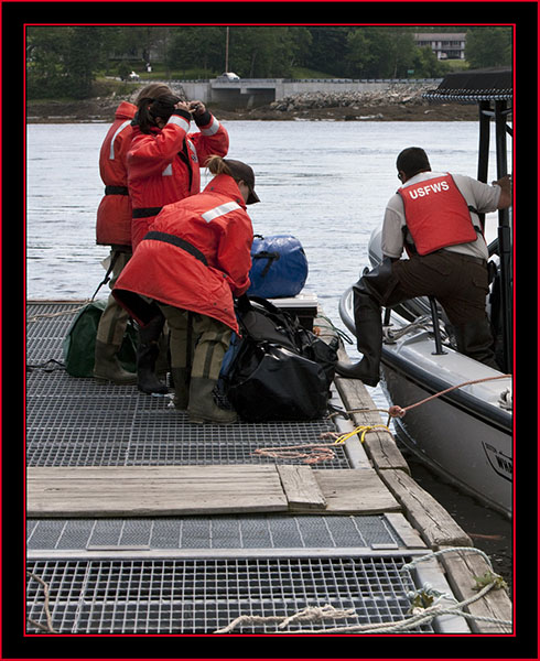 Loading/unloading the Boat - Maine Coastal Islands National Wildlife Refuge