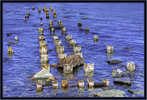 Abandoned Pilings at Portland Breakwater Lighthouse Park
