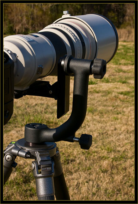 March 2008 equipment upgrades - Canon EF 600mm F/4L IS lens mounted